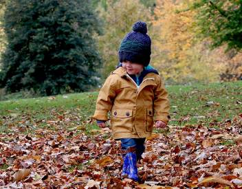 things to do in brantford this fall