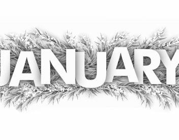 things to do in brant county january 2020